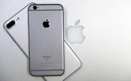 Ngày càng nhiều người dùng Android chuyển sang iPhone