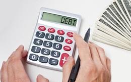 BVSC dự báo năm nay Chính phủ sẽ giảm vay nợ 34% so với năm 2016