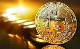 """Dân""""cày"""" bitcoin tiết lộ sốc: Hôm nay là tỉ phú, mai lại trắng tay"""