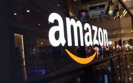 Liền một lúc mua 3 tên miền liên quan đến tiền số, Amazon đang có ý định gì?
