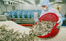 Bộ Công Thương đề nghị Australia bỏ lệnh cấm nhập khẩu tôm khẩn cấp