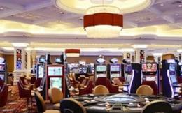 Chưa có casino nào xin thí điểm cho người Việt vào chơi