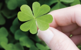 Nhiều người cứ xui xẻo mãi, nếu thấy mình có 5 dấu hiệu này thì đừng lo, may mắn đang ở rất gần thôi