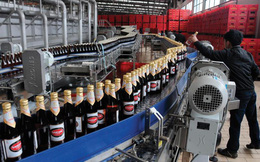 HSBC: Việt Nam đang đi đúng hướng để đạt được mục tiêu cổ phần hóa