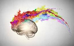 Insight và sức mạnh của tiềm thức - Hiểu về thứ làm cho bao doanh nghiệp đau đầu hại não