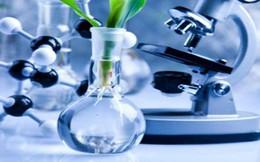 Điều kỳ diệu từ khoa học: Tìm ra cách biến chất thải của con người thành dầu thô!