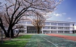 Hai ngôi trường đối lập hoàn toàn mà công chúa, hoàng tử bé của Nhật theo học