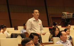Đại biểu Quốc hội: Nên xem phạt dựa trên doanh thu mặt hàng vi phạm cạnh tranh thay vì tổng doanh thu