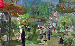 Faros Zoo được cấp 129ha đất để làm vườn thú hoang dã safari tại Quy Nhơn