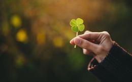 Vì sao có những người luôn may mắn hơn người khác? Đừng lo nếu quá đen đủi, có cách để bạn được may mắn hơn