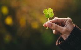 Lời dạy của Khổng Tử: Muốn may mắn, hạnh phúc cả đời, đâu cần phải đi tìm thầy phong thủy giỏi