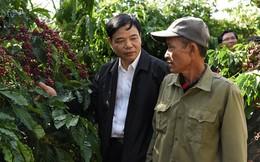Giữ vị thế cà phê Việt, khó hay dễ?