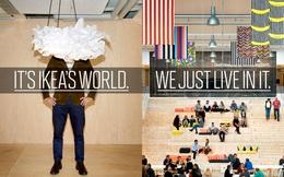 Vị nhân sinh - triết lý giản đơn đã giúp IKEA chinh phục cả thế giới chỉ bằng những món đồ cũng hết sức đơn giản