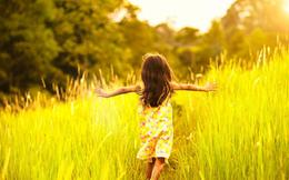 Tiến sĩ tâm lý của Harvard tiết lộ yếu tố quan trọng nhất để có được cuộc sống hạnh phúc