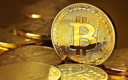 Muốn đầu tư vào bitcoin, chí ít cũng phải biết những thông tin cơ bản trong bài viết này trước đã