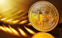 Không chỉ tăng giá điên cuồng, bây giờ Bitcoin còn được đề xuất để bàn thảo trong G20!