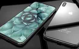 11% người dùng được hỏi sẵn sàng bỏ ra hơn 1000 USD để mua iPhone 8