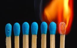 Hiệu ứng Barnum: Sếp nào cũng nên biết để kịp thời truyền lửa, giúp nhân viên tự tin hơn mà cống hiến hết mình cho công ty