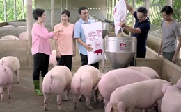 KKR rót 250 triệu USD vào Masan Group và công ty con sản xuất thức ăn chăn nuôi