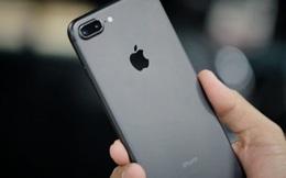 Quy định thay đổi: iPhone xách tay sẽ bị từ chối bảo hành tại Việt Nam nếu không có hóa đơn hợp lệ