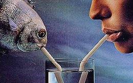 Biến nước biển thành nước uống - phát minh nhỏ này sẽ cứu giúp hàng triệu người trên thế giới