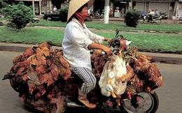 """SuperCub: Từ mẫu xe chở hàng bị coi thường ở Nhật, Honda đã biến nó thành """"huyền thoại"""" không chỉ ở Việt Nam, mà còn khiến dân Mỹ chết mê"""