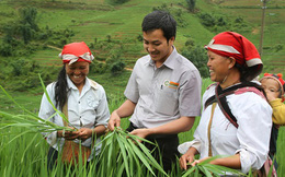 Mekong Capital đã thoái hơn 3 triệu cổ phiếu của Tập đoàn Lộc Trời với giá 68.000 đồng/cp