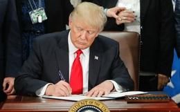 Cớ sao một Tòa án địa hạt Mỹ lại có đủ quyền lực đình chỉ sắc lệnh của Tổng thống Trump?