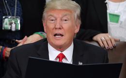 'Thành công chẳng liên quan gì tới đọc sách ít hay nhiều cả', TT Donald Trump và những người nổi tiếng sau là bằng chứng