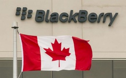 Từ bỏ mảng kinh doanh điện thoại, lợi nhuận của BlackBerry tăng chóng mặt