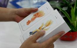iPhone bị từ chối bảo hành, đòn giáng cho thị trường xách tay