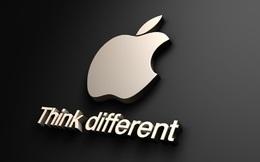 """Với Apple, iPhone hay iPad chẳng qua cũng chỉ là """"khung vải trống"""""""