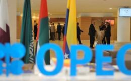 Giá dầu thô giảm mạnh, OPEC đang mất dần sự chọn lựa