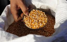 Vì sao Trung Quốc ồ ạt thâu tóm các công ty nông nghiệp khắp thế giới?