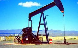 Con đường tái cân bằng thị trường dầu thô vẫn còn dài