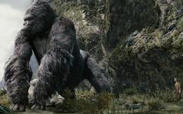 Đạo diễn Kong Skull Island: Tôi chưa từng thấy thiên nhiên, làng quê, con người nơi nào tuyệt vời như ở Việt Nam!