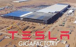 Đi tiên phong về ý tưởng, nhưng Tesla của Elon Musk lại sắp bị đối thủ không-ngờ-tới này vượt mặt khả năng sản xuất pin