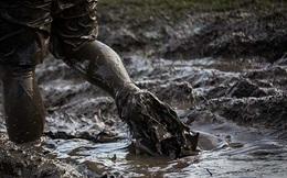 """""""Làm doanh nhân khổ lắm, người ngoài chỉ nhìn thấy hào quang chứ nào ai biết chúng tôi phải lội qua bao nhiêu vũng bùn…"""""""