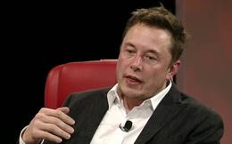 Elon Musk lý giải lý do vì sao dân văn phòng rất ngại học tập những thứ mới
