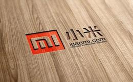 Chỉ mất 6 năm để vào top 5 công ty điện thoại lớn nhất thế giới: Bí quyết đằng sau sự thành công vũ bão của 'hạt gạo nhỏ' Xiaomi