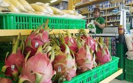 Sau 9 tháng, chỉ riêng trái cây HAGL đã lãi hơn 600 tỷ đồng, tỷ suất lợi nhuận lên tới 50%