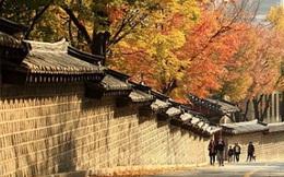 """Đi tìm sự thật về lời nguyền của con đường ly hôn ở Hàn Quốc mà cặp đôi nào cũng """"né"""""""