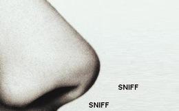 Chỉ có một bên mũi của bạn hoạt động và những sự thật không ai biết về chiếc mũi