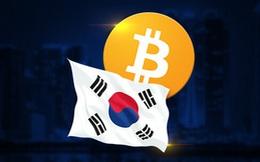 Sau Trung Quốc, đến Hàn Quốc cũng cấm hoạt động ICO liên quan đến tiền ảo khiến giá Bitcoin giảm mạnh