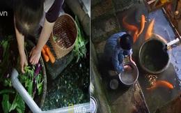 Người Nhật khiến cả thế giới thán phục vì rửa bát, rửa rau ngay ở kênh nuôi cá