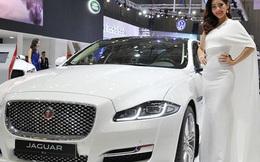 Hàng loạt doanh nghiệp nhập khẩu ô tô bị truy thu thuế trăm tỷ