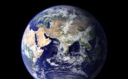 """15.000 nhà khoa học kêu gọi loài người """"đừng phá hủy Trái đất nữa"""""""