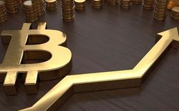 """Giải mã """"cơn điên"""" của bitcoin"""