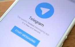 """Nhà phát triển ứng dụng tin nhắn """"không thể bị hack"""" trị giá 5 tỷ USD Telegram: không bán dù bất kỳ giá nào!"""