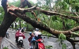 Cơn bão Tembin cấp 12 đổ bộ vào Nam Bộ có sức gió kinh hoàng đến thế nào?